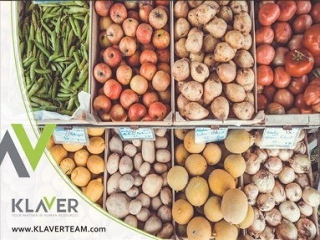 Sortownia warzyw i owoców w Holandii-Westland, praca bez doświadczenia!